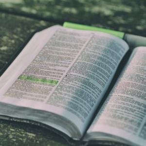 How Much Do I Treasure God's Word