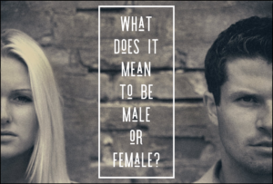 What Does It Mean To Be Male Or Female?