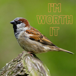 Declaration of Truth: I'm Worth It!